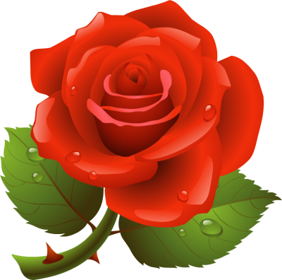 Rose hd clipart clipart royalty free stock Free Rose Cliparts, Download Free Clip Art, Free Clip Art on Clipart ... clipart royalty free stock