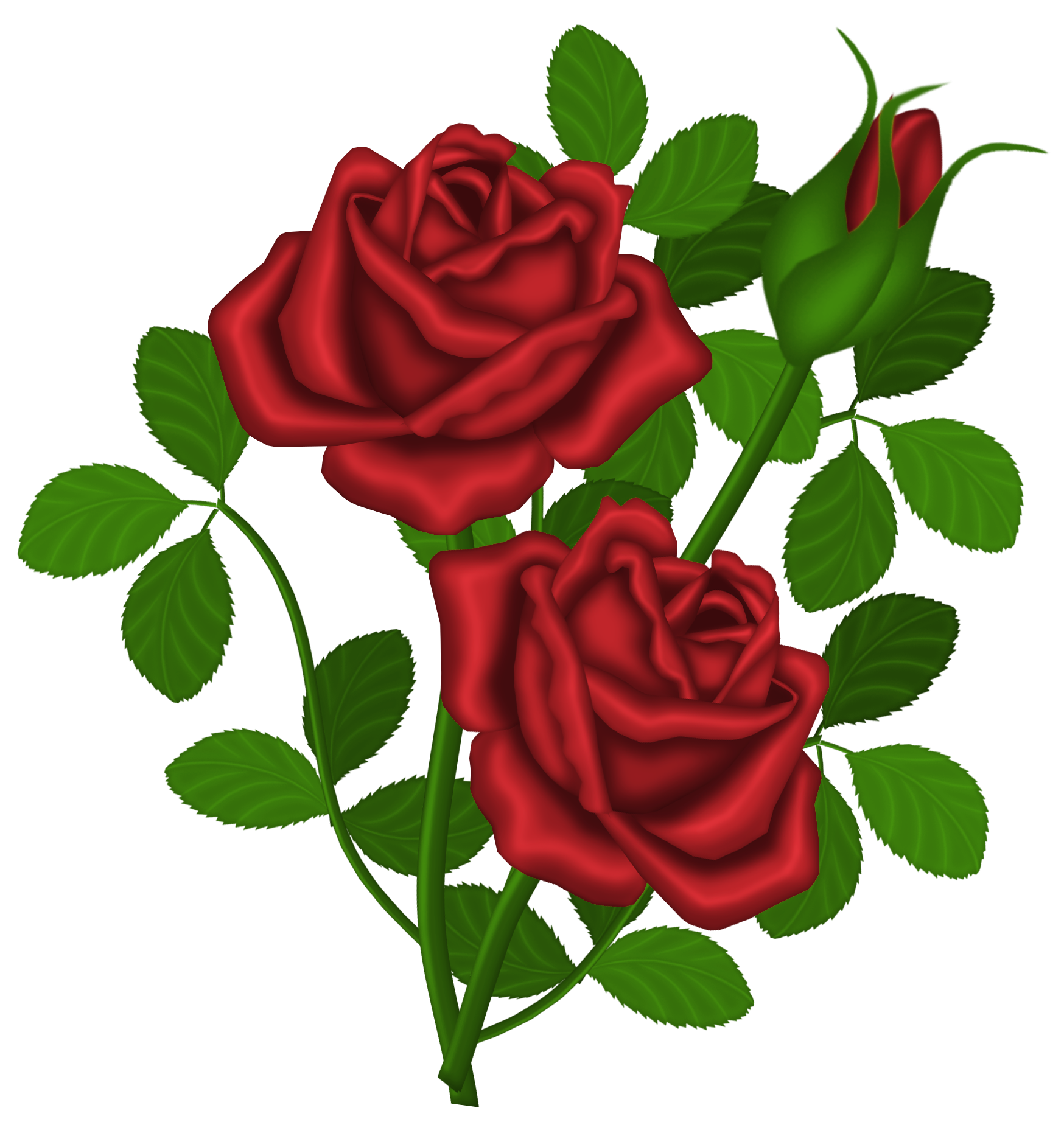 Castillian rose clipart transparent library Red Roses PNG Picture Clipart | Gallery Yopriceville - High-Quality ... transparent library