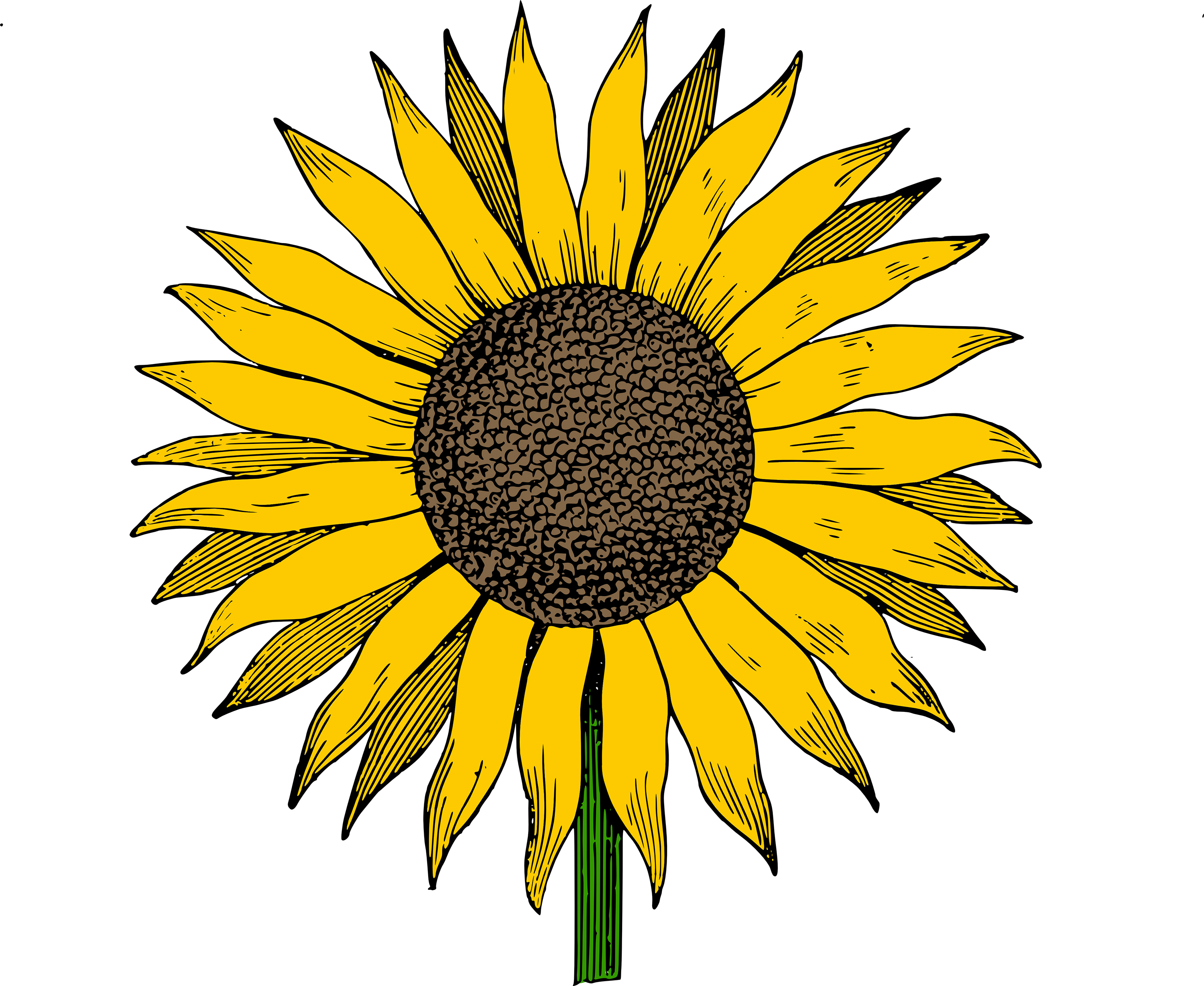 Library of clipart royalty free downloads sun flowers png ...