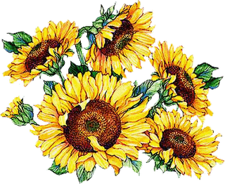 Cliparts sun flowers clip free download Beautiful clipart sunflowers | clip art | Sunflower illustration ... clip free download