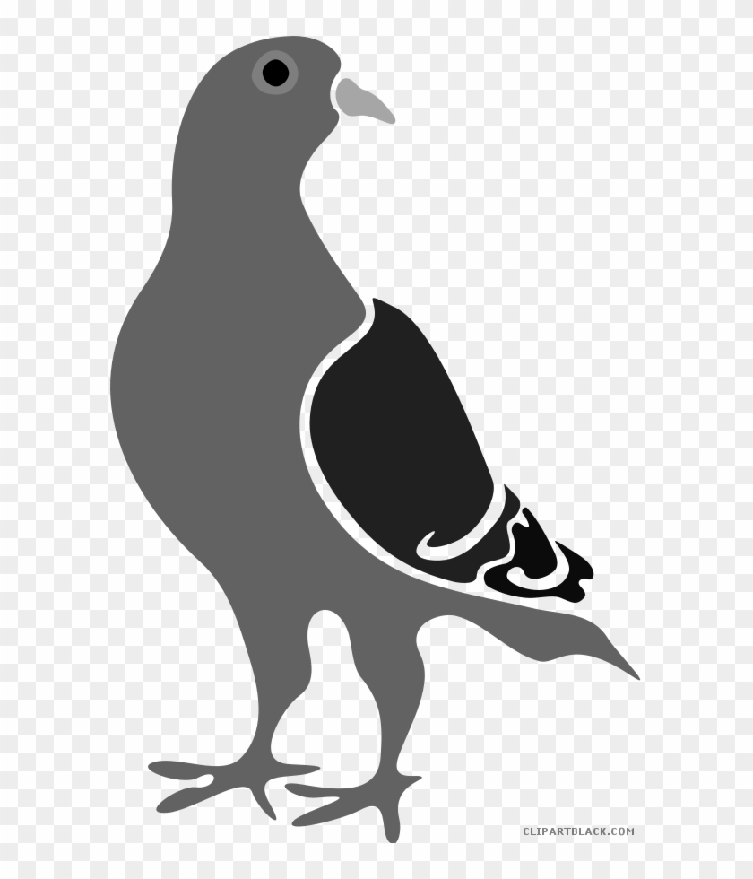 Piegeon clipart png freeuse Pigeon Clipart - Google Pigeon Algorithm, HD Png Download - 594x900 ... png freeuse
