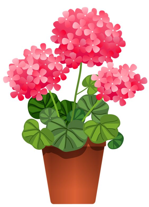 Clipart plants and flowers clipart POTTED FLOWERS | Floral Graphics | Pinterest | Flower and Potted ... clipart