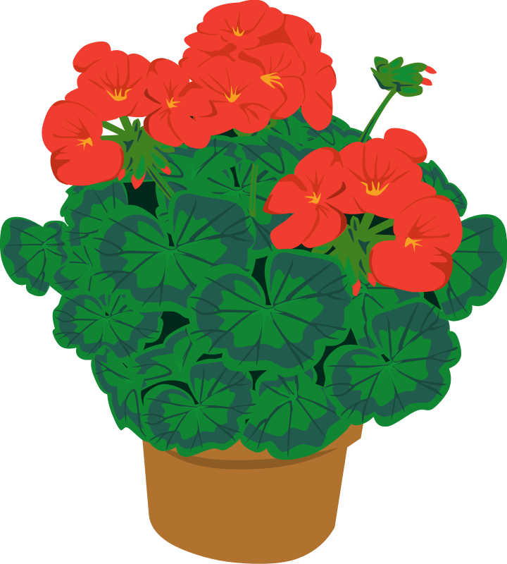 Clipart plants and flowers clip art download Flower Potted Plant Clipart - Clipart Kid clip art download