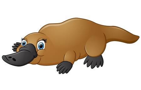 Clipart platypus graphic stock Clipart platypus » Clipart Portal graphic stock
