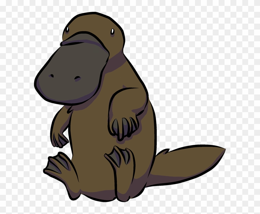 Clipart platypus svg royalty free stock A Platypus - - Beaver Clipart (#742804) - PinClipart svg royalty free stock