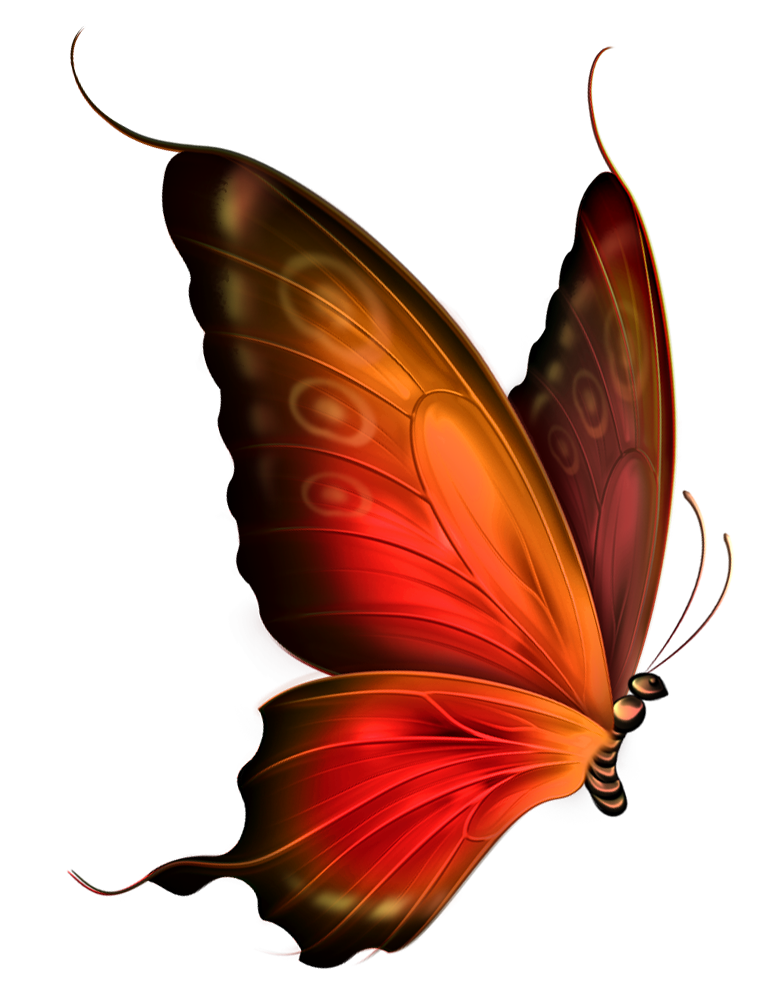 Clipart png transparent clip royalty free stock Red_and_Brown_Transparent_Butterfly_Clipart.png?m=1367532000 clip royalty free stock