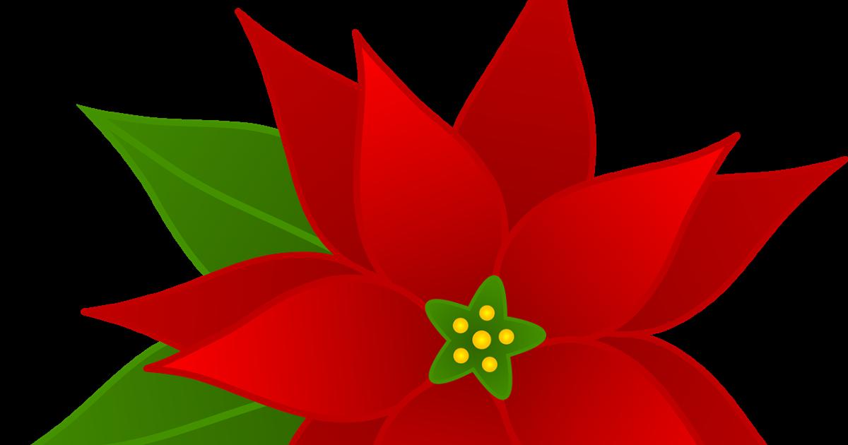 Clipart poinsettia flower clip download Flowers Clip Art | Many Flowers clip download