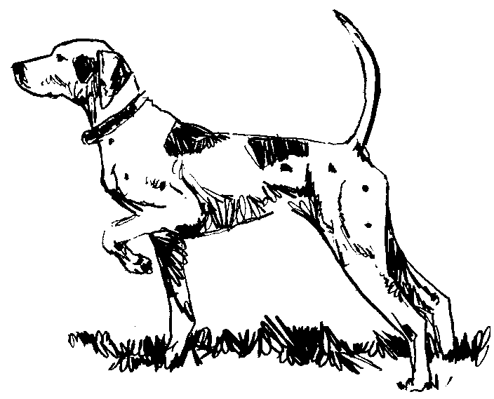 Clipart pointer dog. Clipartfest