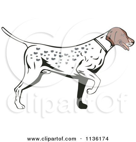 Royalty free rf illustrations. Clipart pointer dog