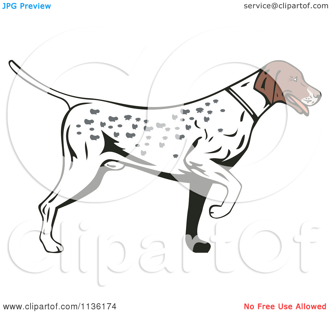 Clipart pointer dog. Of a retro hunting