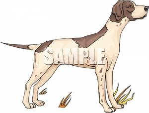Clipart pointer dog clip art freeuse download Clipart pointer dog - ClipartFest clip art freeuse download