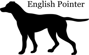 Hunting kid images english. Clipart pointer dog
