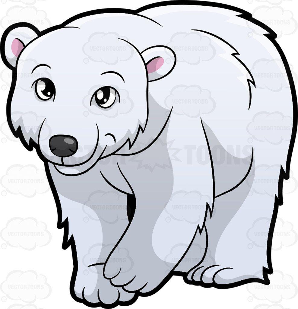 Clipart polar bear png freeuse stock Clipart polar bear 4 » Clipart Station png freeuse stock