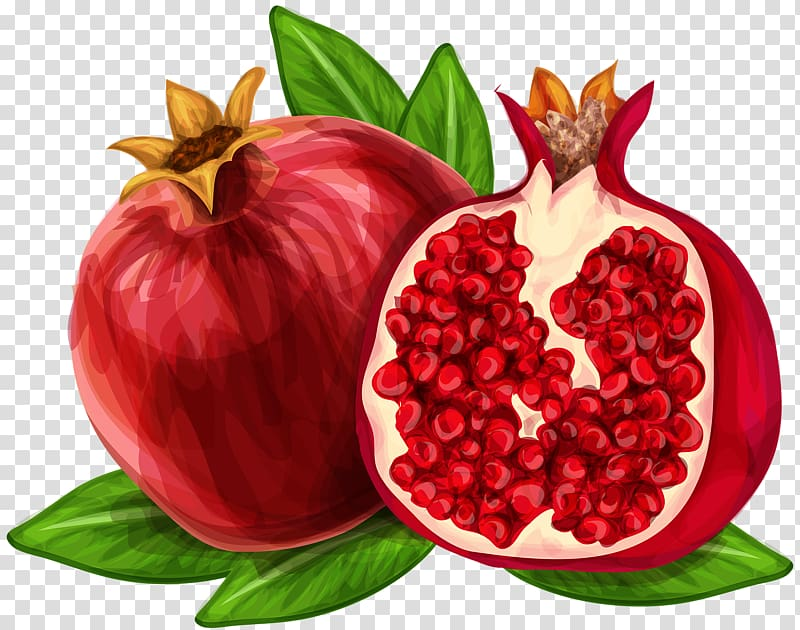 Clipart pomegranate png library stock Pomegranate juice , Hand-painted watercolor pomegranate transparent ... png library stock