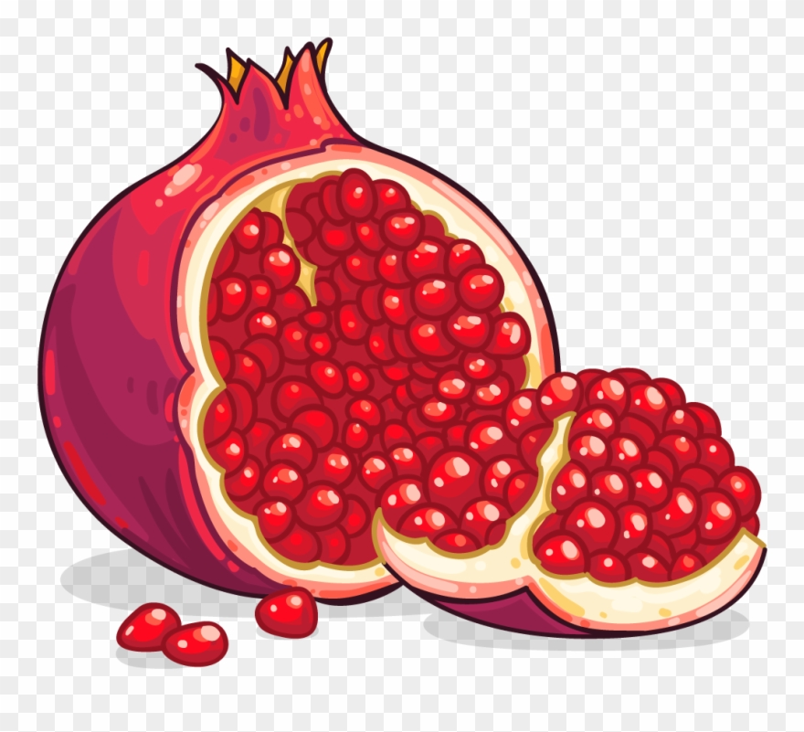Clipart pomegranate banner free library Pomegranate Clip Art Pomegranate Clipart Photo Niceclipart ... banner free library