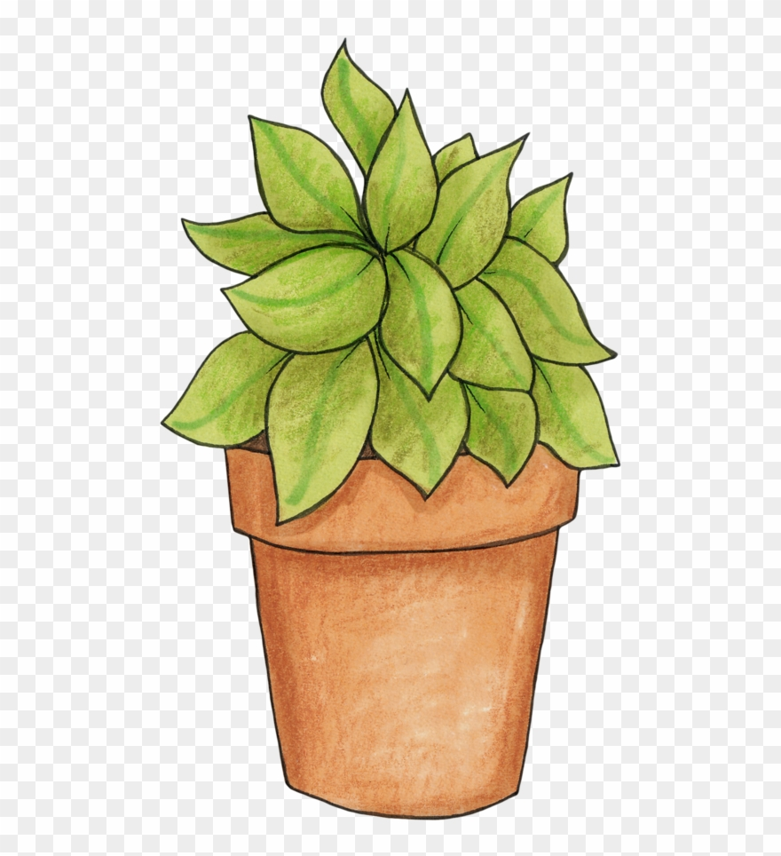 Clipart potted plant vector free stock Potted Plant - Pot Plant Clip Art - Png Download (#146734) - PinClipart vector free stock