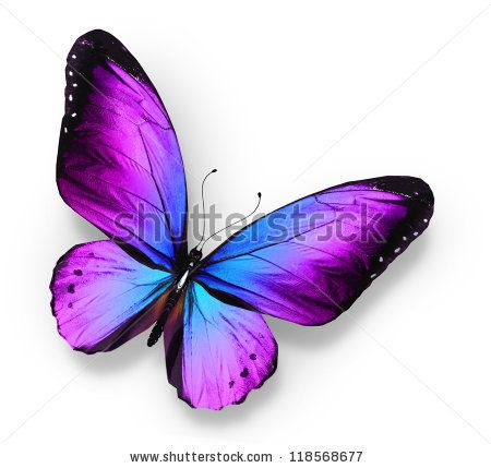 Clipart purple butterfly with hearts on wings svg library library Clipart purplish blue butterfly with hearts on wings - ClipartFest svg library library