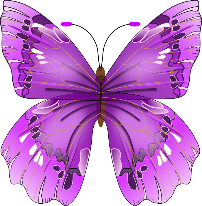Clipart purple butterfly with hearts on wings freeuse 17 Best images about butterflies on Pinterest | Mosaics, Lower ... freeuse