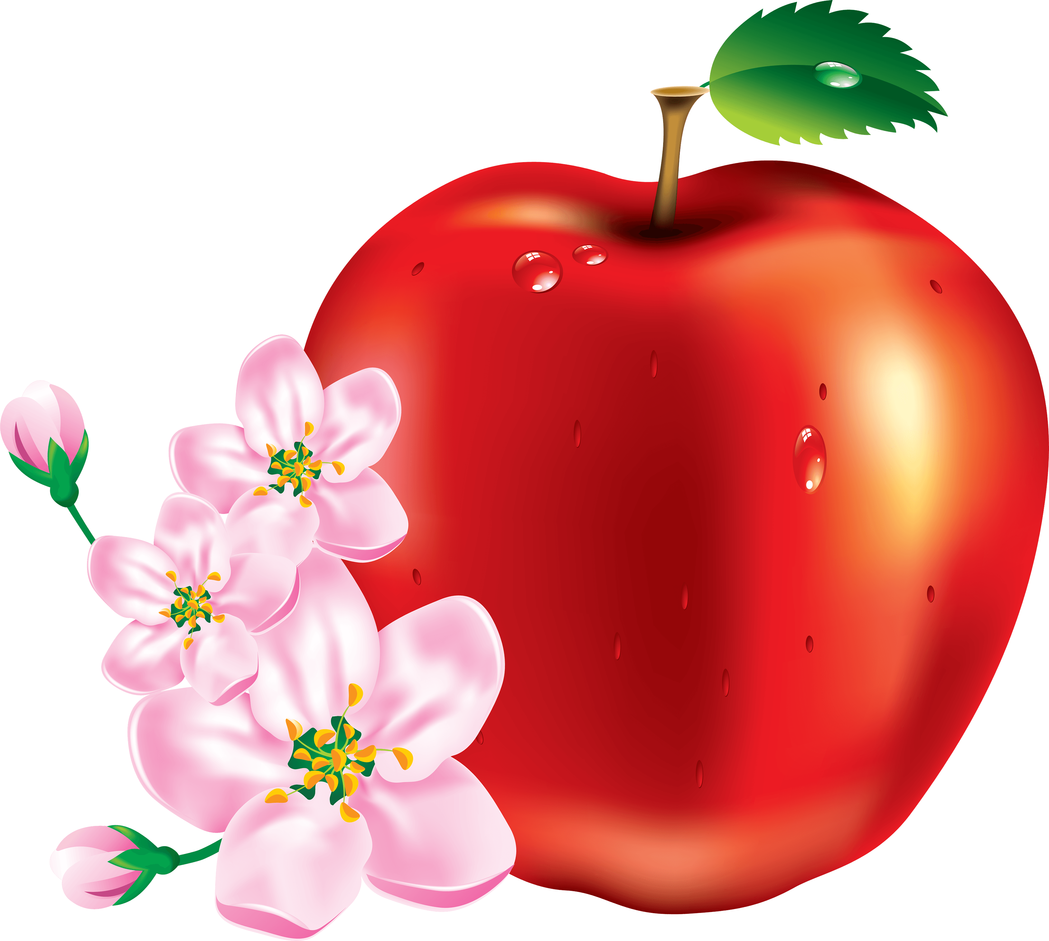 Clipart red apple clipart freeuse library 50 Red Apple Png Image clipart freeuse library