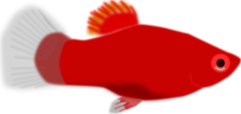 Fish clipart no background svg library Fish | Free Stock Photo | Illustration of a red fish | # 16753 svg library