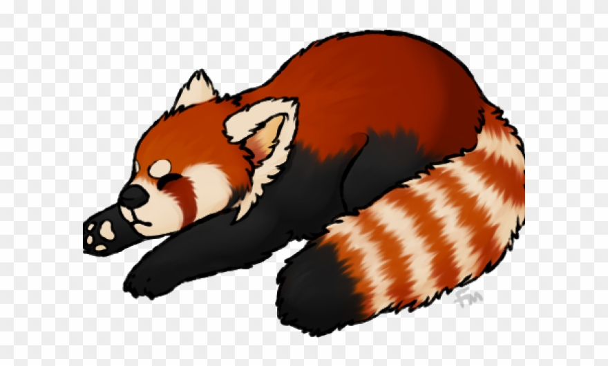 Red panda clipart vector library download Red Panda Clipart Transparent Background - Red Panda No Background ... vector library download
