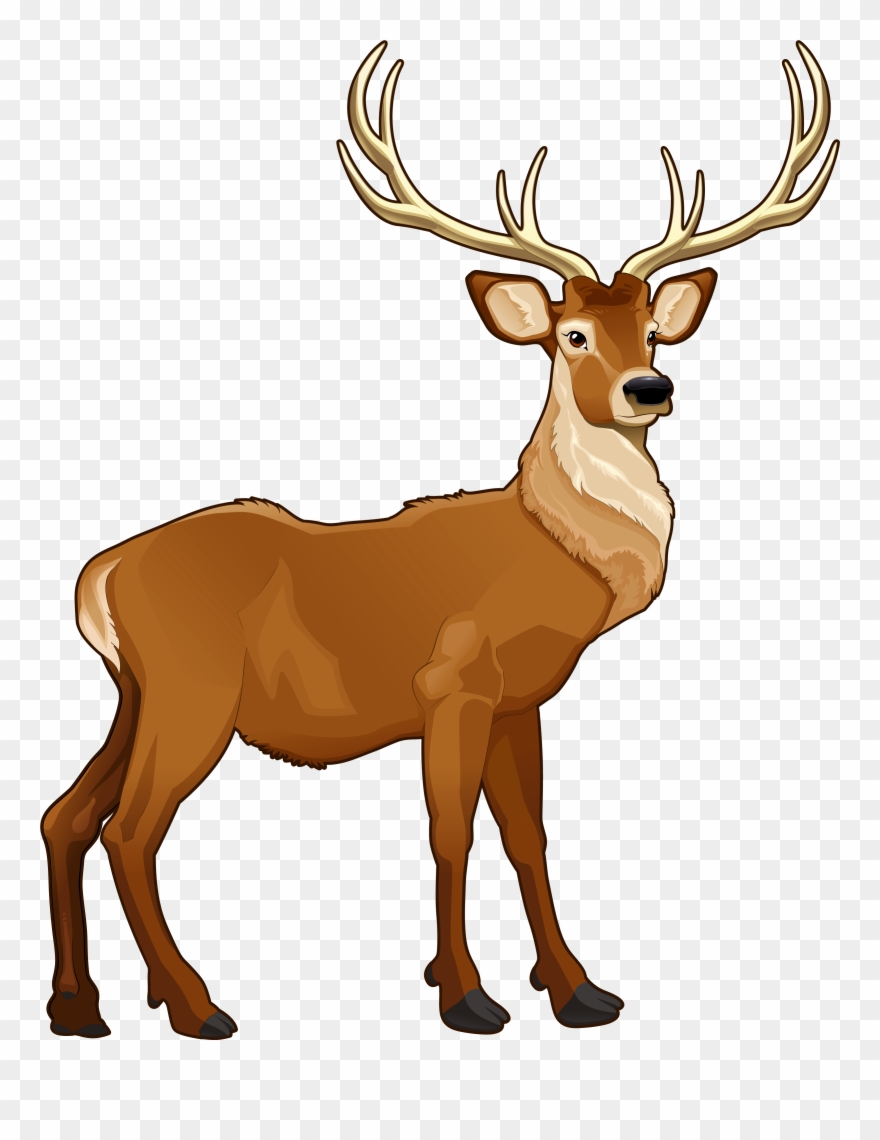 Clipart reindeer jpg library Free Reindeer Clipart The Cliparts - Png Download (#10641) - PinClipart jpg library