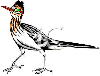 Clipart roadrunner clipart free download Roadrunner Clipart Free | Clipart Panda - Free Clipart Images ... clipart free download