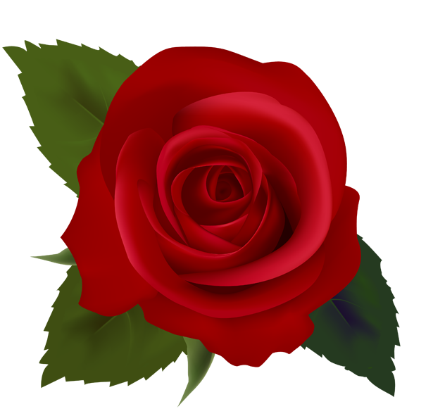 Rose free clipart banner royalty free stock Free Rose Images, Download Free Clip Art, Free Clip Art on Clipart ... banner royalty free stock