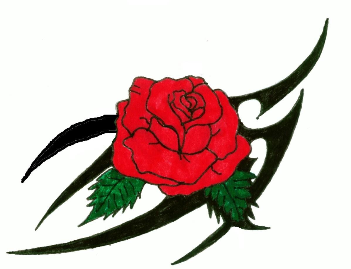 Clipart rosen bilder. Tattoo best hiho endlich