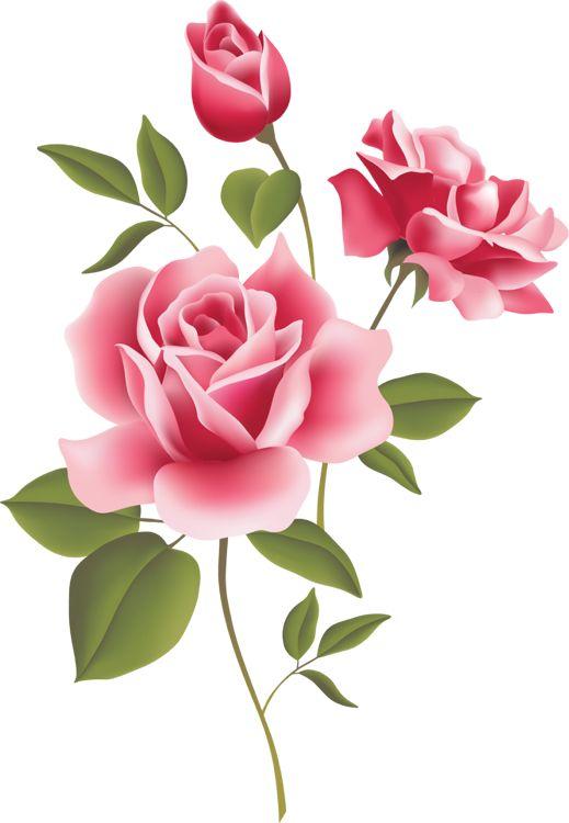 Clipartfox vielliebchen red rose. Clipart rosen bilder