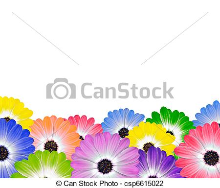 Clip Art of Row of Colorful Daisy Flowers on White - Row of ... image royalty free stock