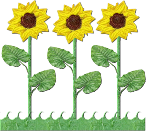 Flowers Row Of Sunflowers | Free Images at Clker.com - vector clip ... vector transparent stock
