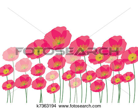 Clipart of Row of poppy flowers isolated on wh k7363194 - Search ... vector freeuse