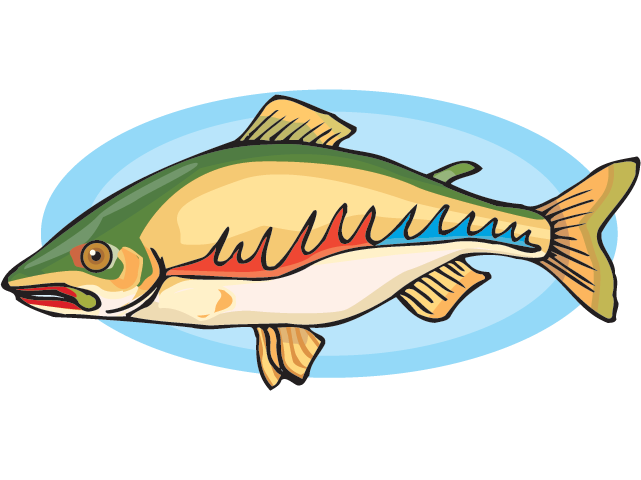 Fish: Resources (Science Trek: Idaho Public Television) png black and white download