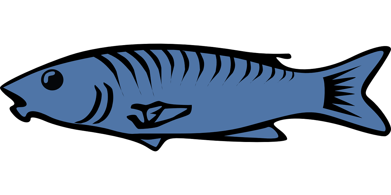 Fish Salmon Cod Clip art - Blue fish 1280*640 transprent Png Free ... png library