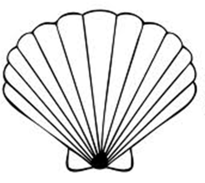 Clipart sea shell picture transparent download Free Seashells Cliparts, Download Free Clip Art, Free Clip Art on ... picture transparent download