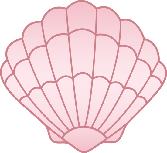 Seashell clipart png png royalty free download 15+ Sea Shell Clipart | ClipartLook png royalty free download
