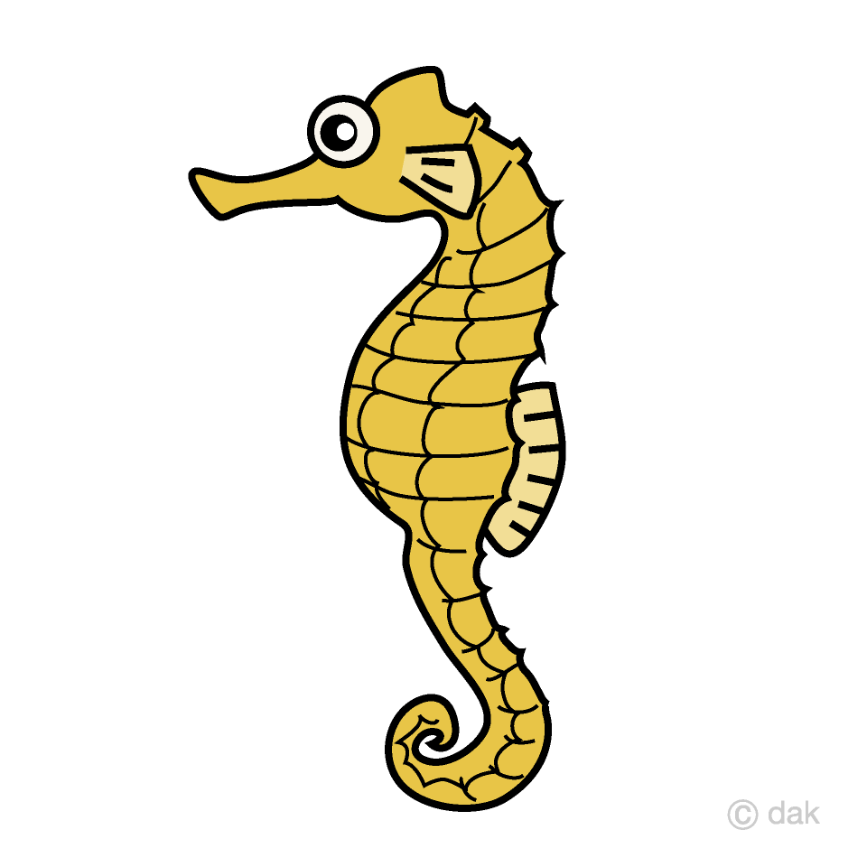 Clipart seahorse pictures graphic freeuse library Seahorse Clipart Free Picture|Illustoon graphic freeuse library