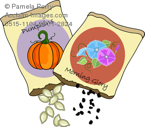 Clipart seed packets svg library download Clip Art Image of Pumpkin and Morning Glory Seed Packets svg library download