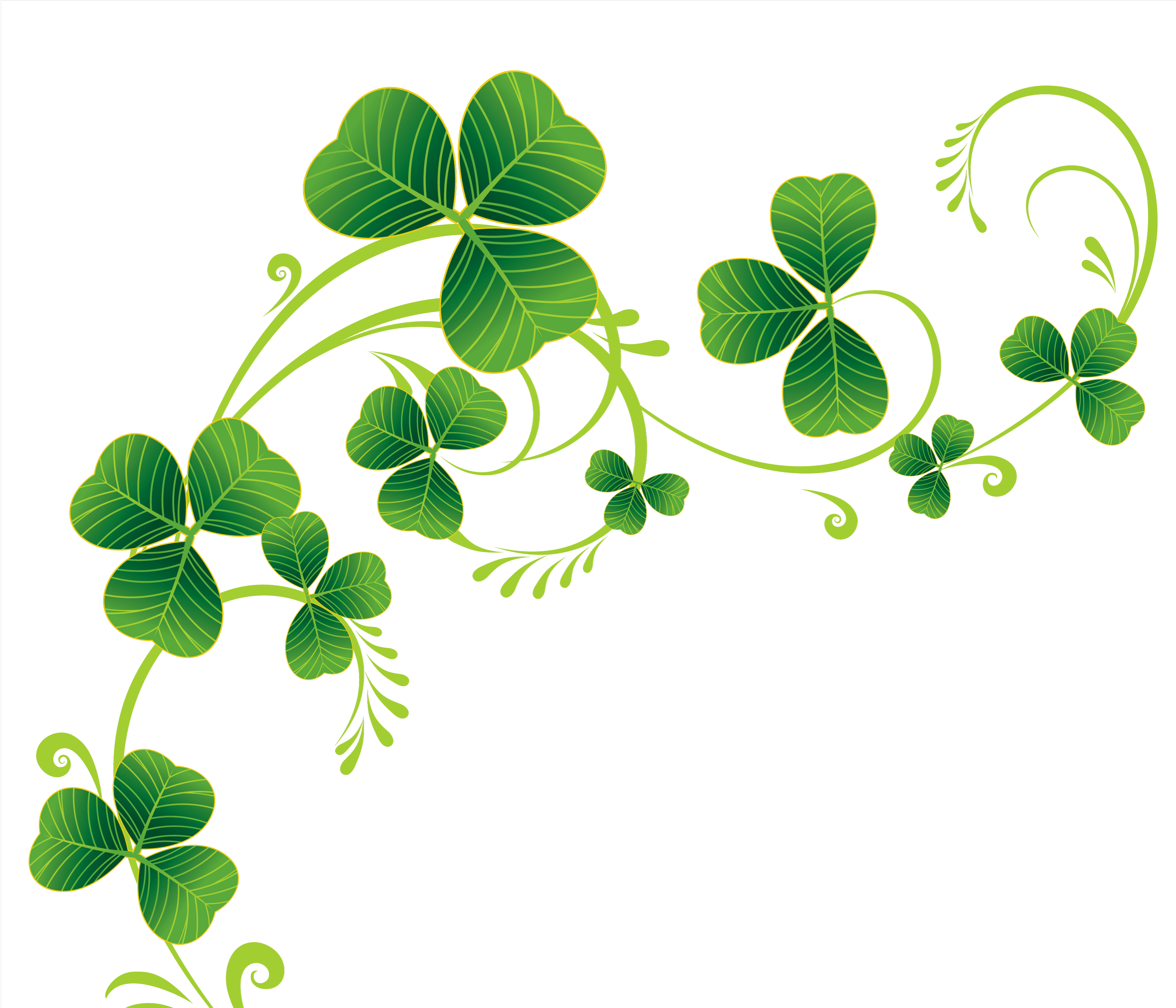 Tiny clover clipart clip art freeuse Border Of Shamrocks Clipart - Clipart Kid | The Stirling | Shamrock ... clip art freeuse
