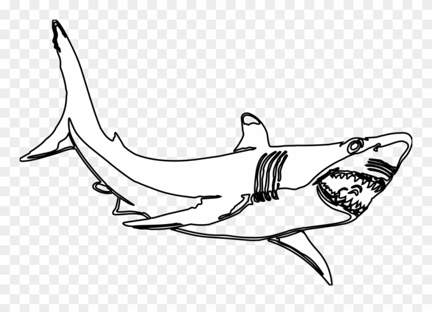 Great white shark clipart black and white clip art library stock Hammerhead Shark Template Free Download Clip Art With - Great White ... clip art library stock