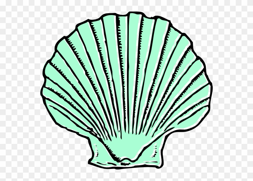 Clipart shell clip art black and white stock Aqua Seashell Clip Art At Clipart - Shell Clip Art - Png Download ... clip art black and white stock
