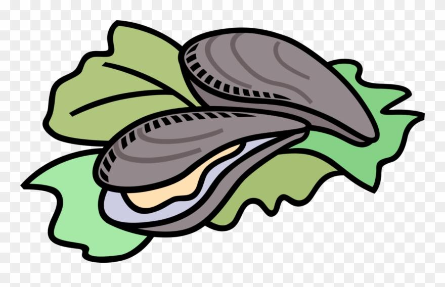 Oystdr clipart image freeuse download Vector Illustration Of Marine Bivalve Mollusk Shellfish - Oysters ... image freeuse download