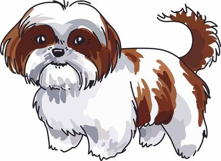 Clipart shi clip freeuse library Have A Cute Shih Tzu With You Always With This Little Dog. - 328*450 ... clip freeuse library