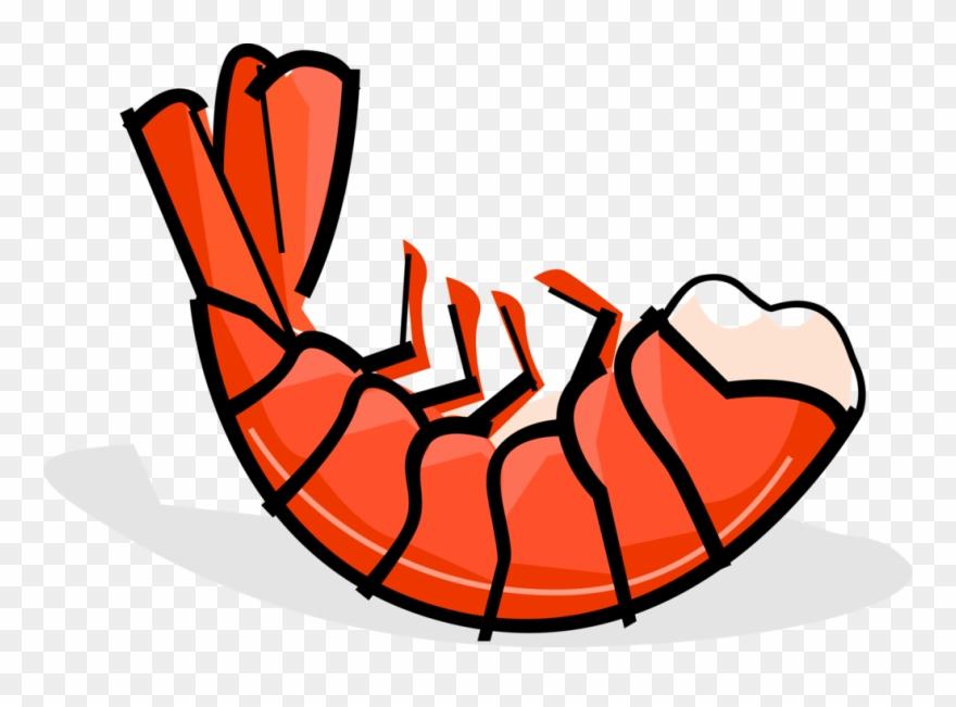 Clipart shrimp clip art freeuse stock Seafood Clipart Prawn - Shrimp Clip Art - Png Download (#806816 ... clip art freeuse stock