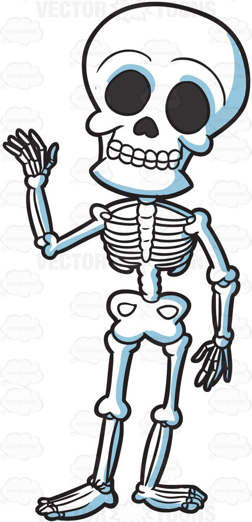 Clipart skeleton image free library A friendly skeleton vector clip art cartoon - Clipartable.com image free library