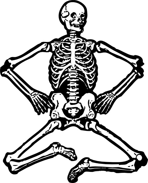Clipart skeleton vector transparent Human Skeleton clip art Free vector in Open office drawing svg ... vector transparent