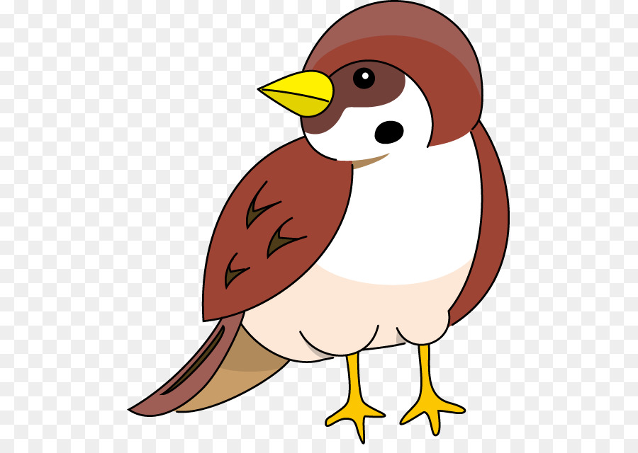 Clipart sparrows