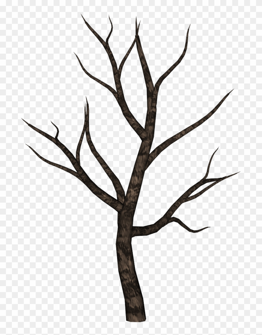 Spooky forest clipart png freeuse stock Spooky By Ecathe Art Inspirations - Spooky Tree Clipart - Png ... png freeuse stock