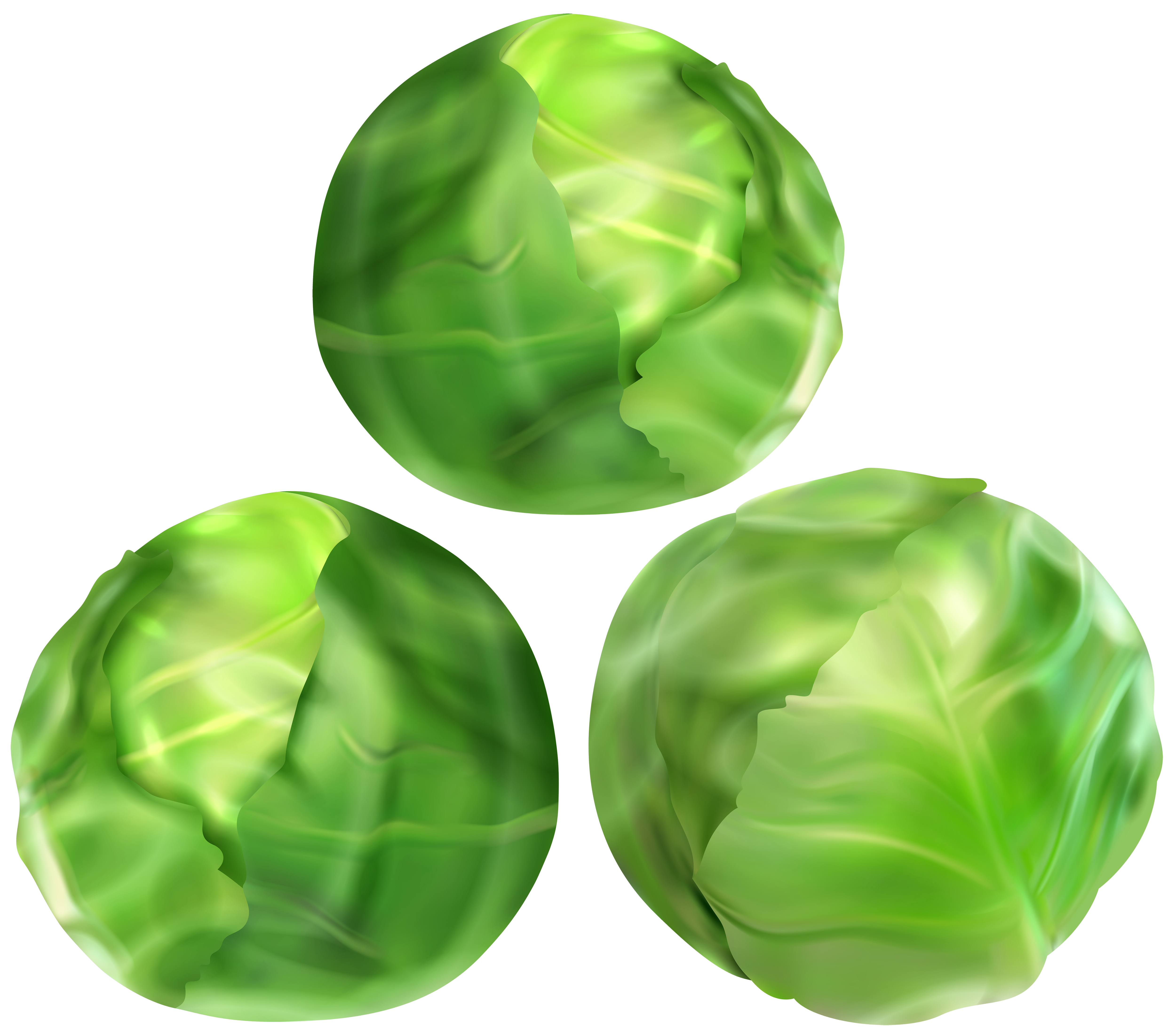 Clipart sprouts png free stock Brussels Sprouts PNG Clip Art Image | Gallery Yopriceville - High ... png free stock